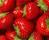 Erdbeeren – Die rote Verführung! Kilokalorien, Inhaltsstoffe und Wirkung