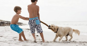 20140310_two-boys-playing-with-dog-on-the-beach_00057279