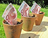 Wie im Internet Geld verdienen? Online Geld verdienen mit SeiSmart.de